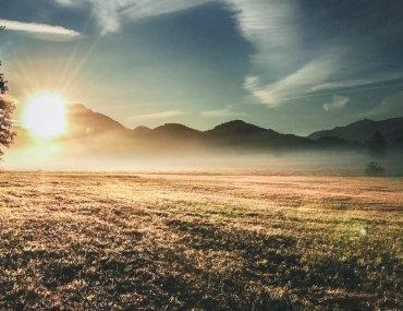 Free Devotions - Online Ministry - God Creates Joy
